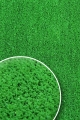 [Trávní koberec GREEN GOLF 1000]