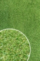 [Trávní koberec GREEN GOLF 2000]