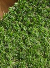 [Travní koberec FUNgrass Valencia ]