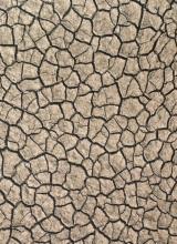 [PVC Surfaces Mojave]