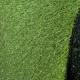 Trávní koberec ASTRA - ARCADIA 6909